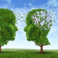 アロマで嗅覚を刺激して認知症を改善